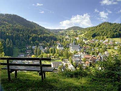 travel4dogs: 4 Tage Kurzurlaub mit Hund in Todtmoos, Schwarzwald