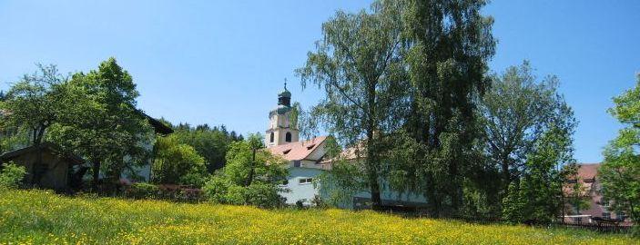 4 Tage Urlaub mit Hund in Hohenau
