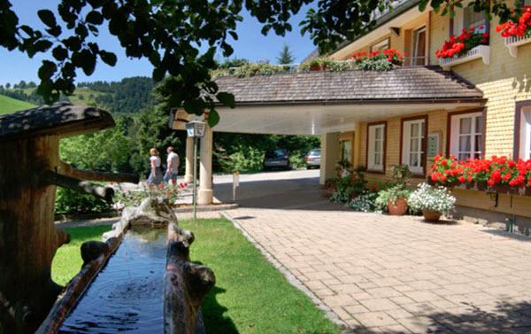 Urlaub mit hund im schwarzwald 4 tages arrangement for Hotel auf juist mit hund