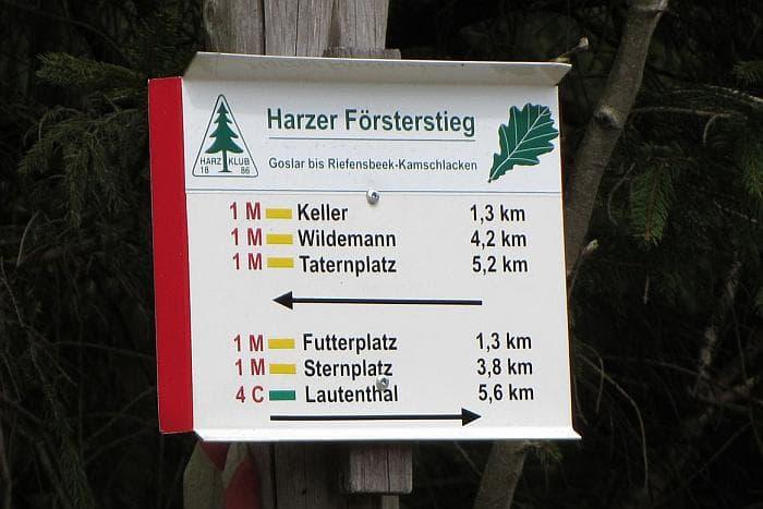 5 Tage Wanderreise mit Hund auf dem Harzer Försterstieg