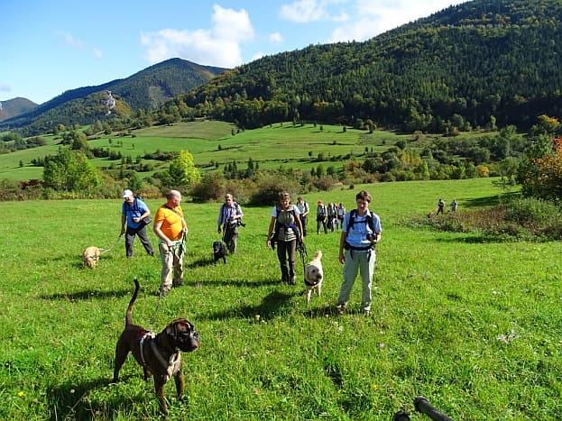Hundewandern Mala Fatra - Gruppenreise Slowakei